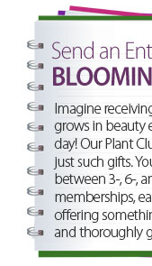 Send an entire year of blooming gifts! Imagine receiving a gift that grows in beauty every single day! Our Plant and Bulb Clubs provide just such gifts. You can choose between 3, 6, adn 12-month memberships, each type offering something different and thoroughly gorgeous.