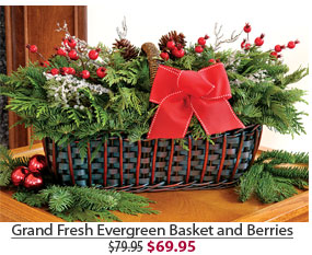 Grand Fresh Evergreen Basket and Berries NOW $69.95