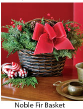 Noble Fir Basket